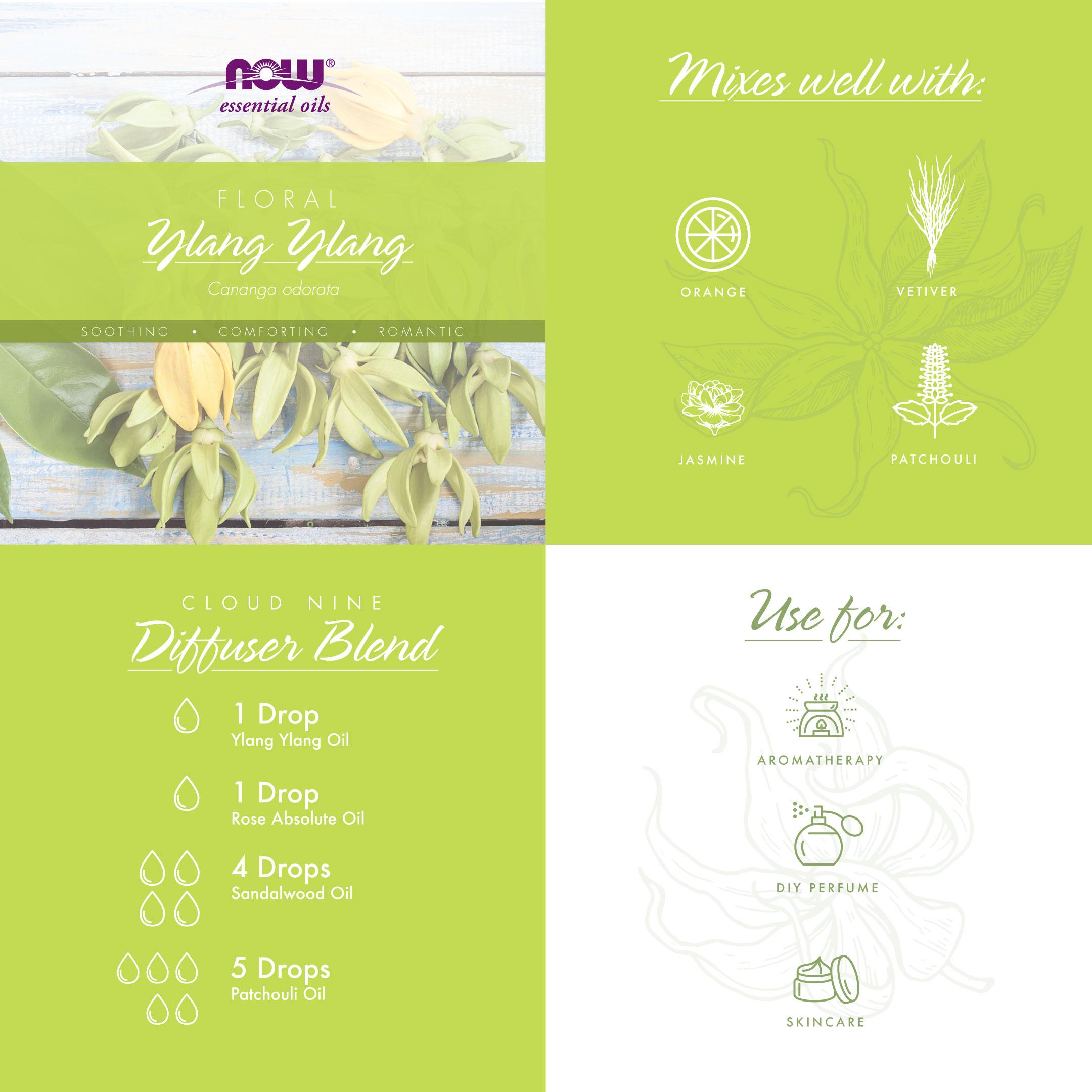floral infographic ylang ylang