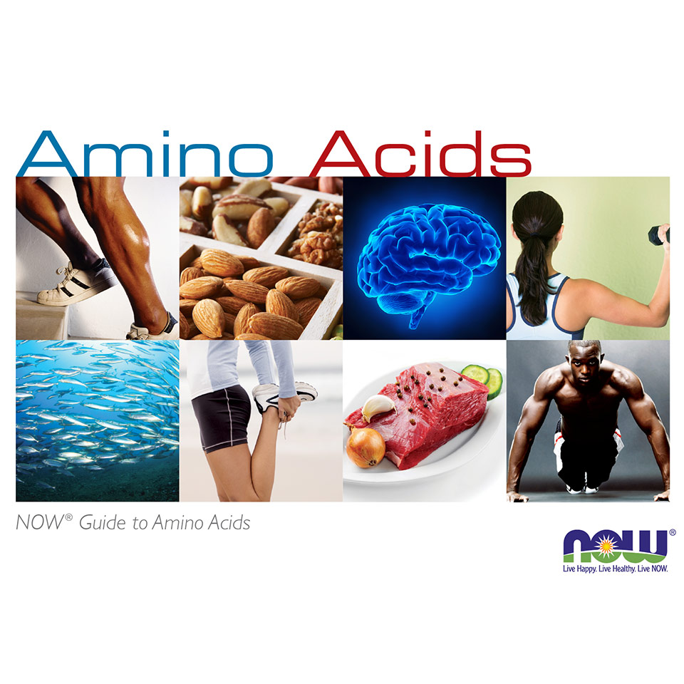amino acid brochure thumbnail