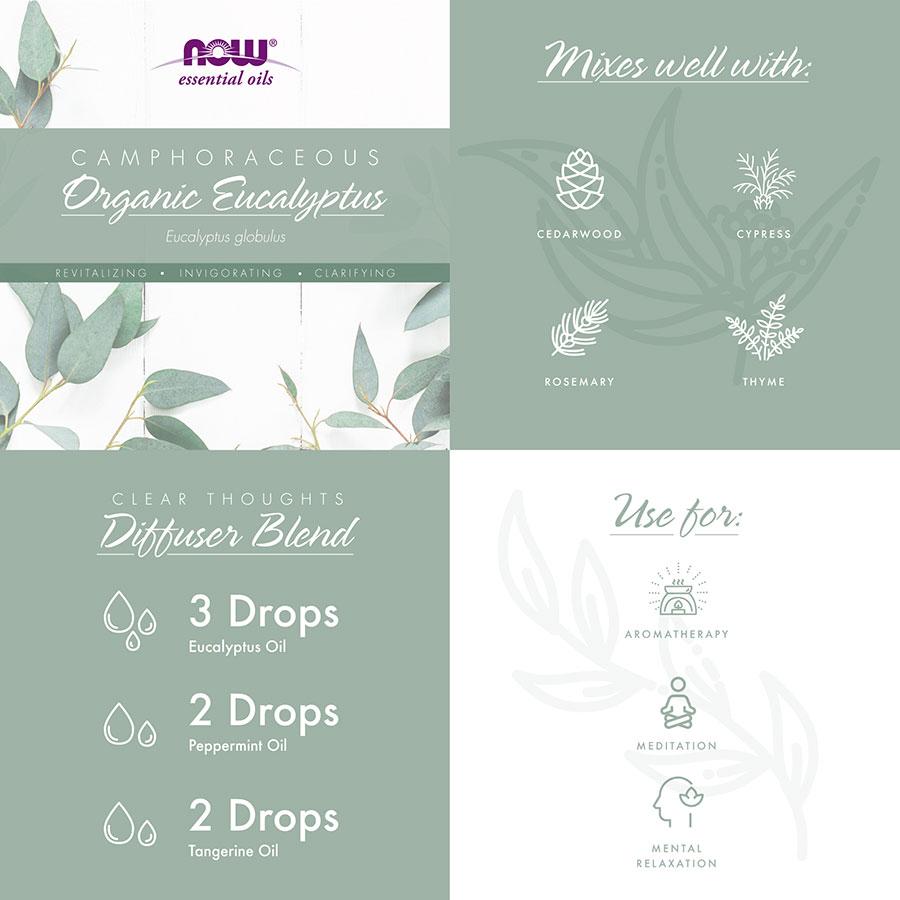 organic eucalyptus camphoraceous infographic