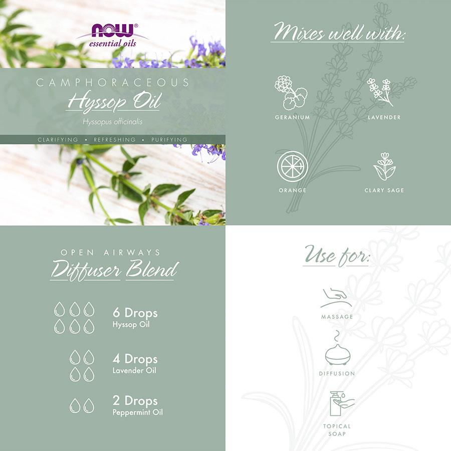 camphoraceous organic hyssop info