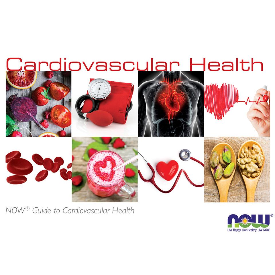 cardiobrochure preview