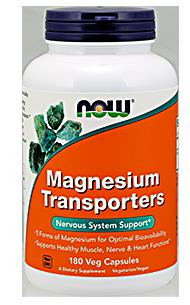 magnesium transporters featured