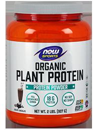 plant protein organic chocolate powder featured