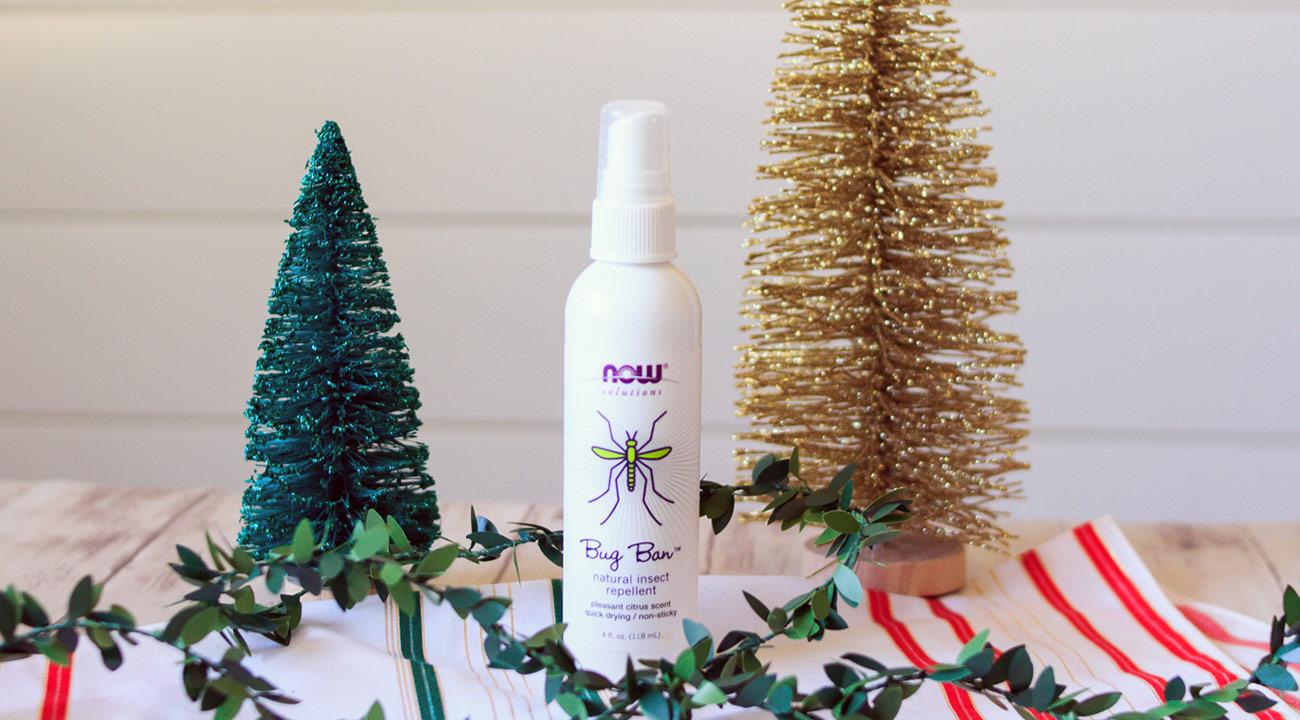 holiday family kit slide 8 bug ban spray