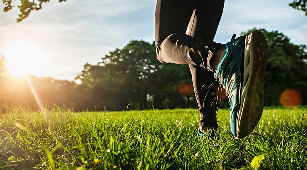 field workout slide