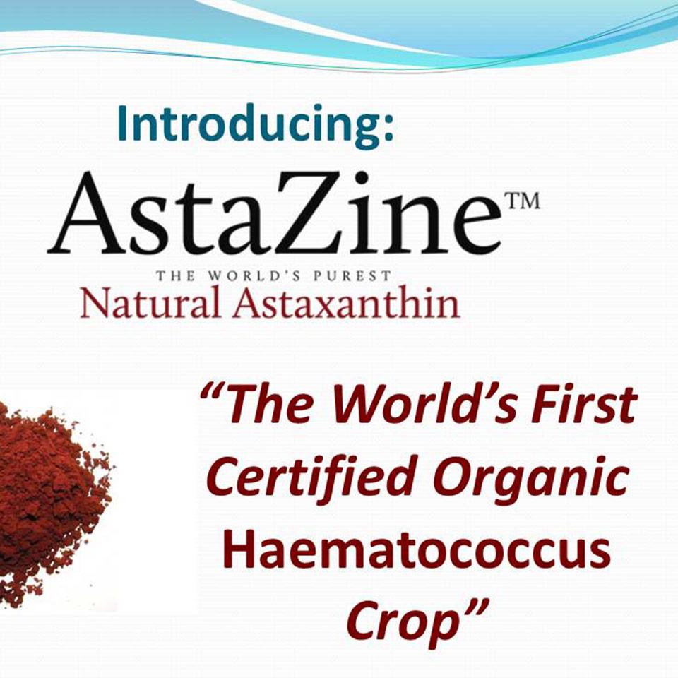 AstaZine Astaxanthin webinar image