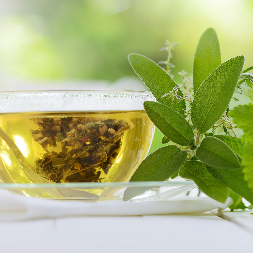 More About Green Tea