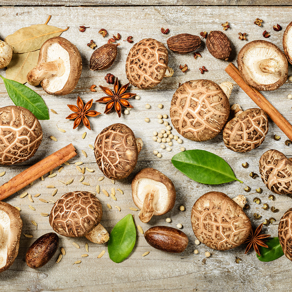 More About Herbs And Mushrooms