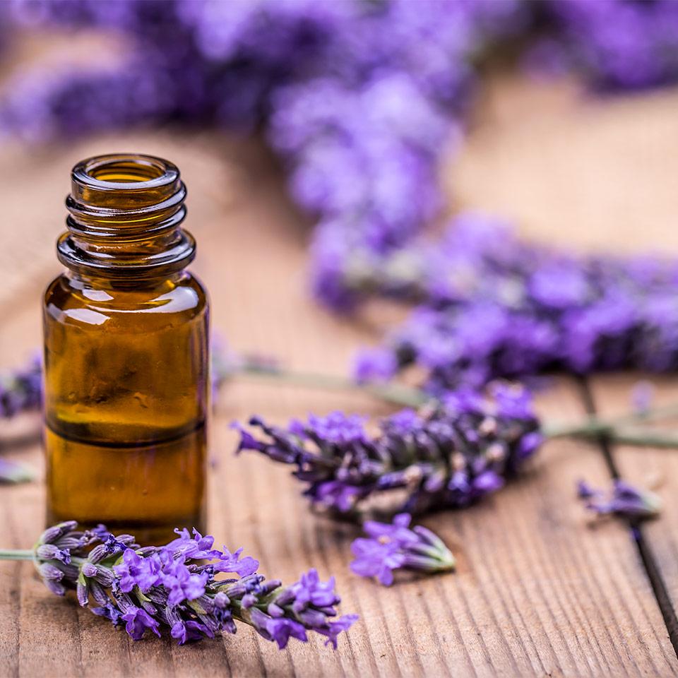 Lavender Oil ISO Standard FAQ