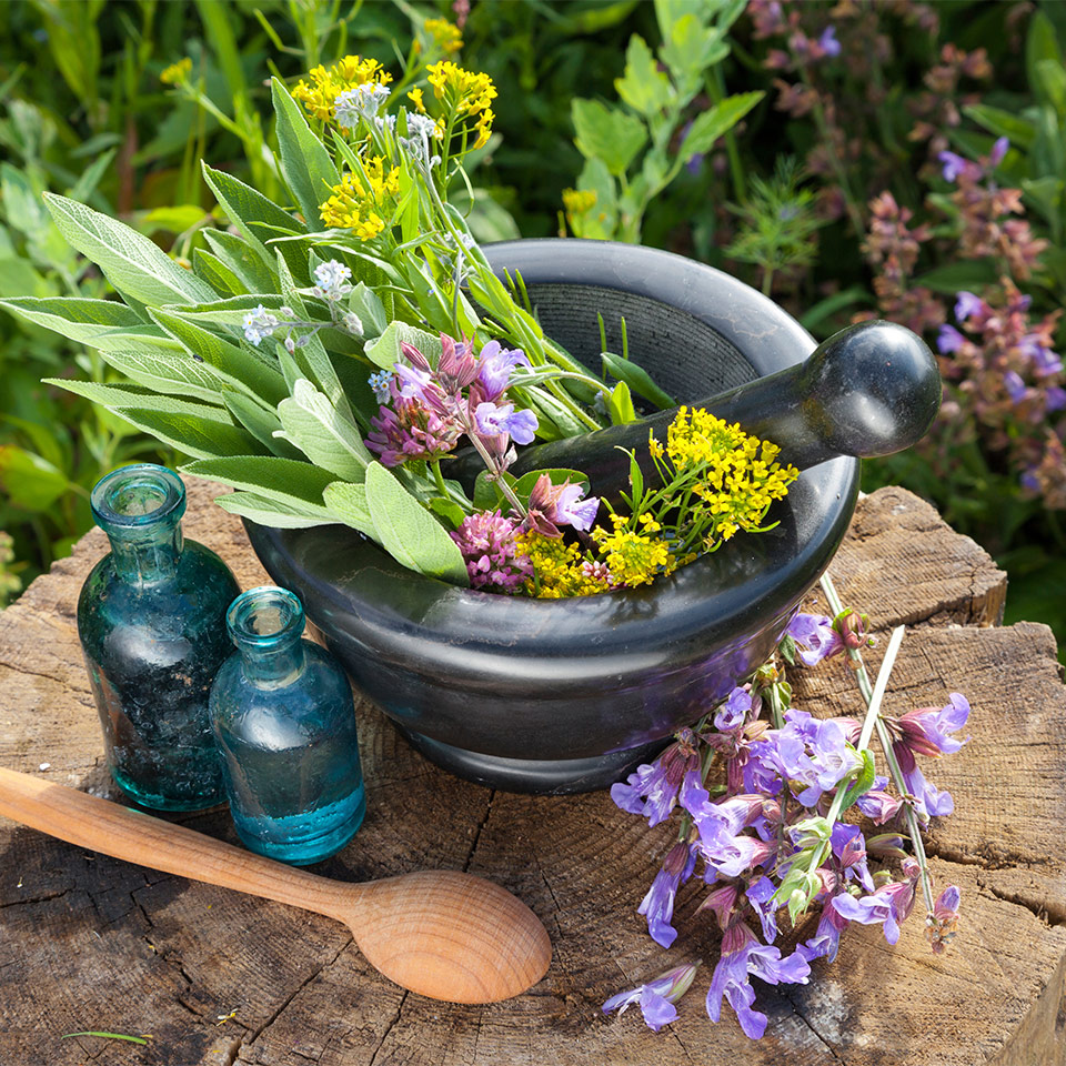 More About Organic Essential Oils