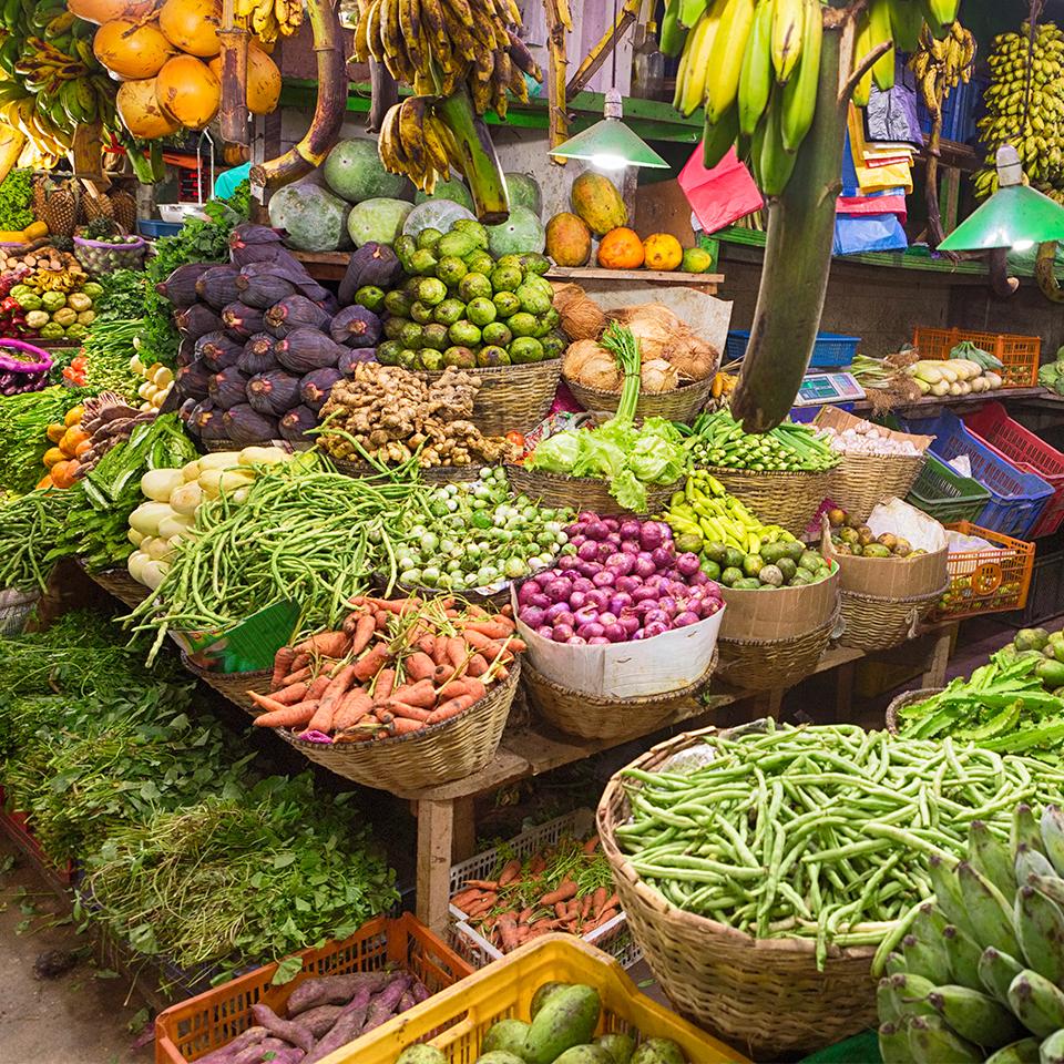 Vegetarian Glucosamine & MSM FAQs