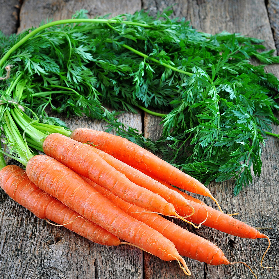 More About Vitamin A