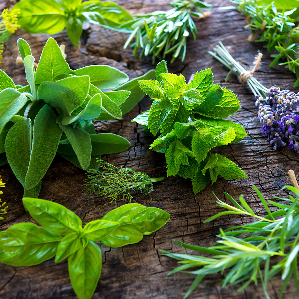 More About Whole Herbs